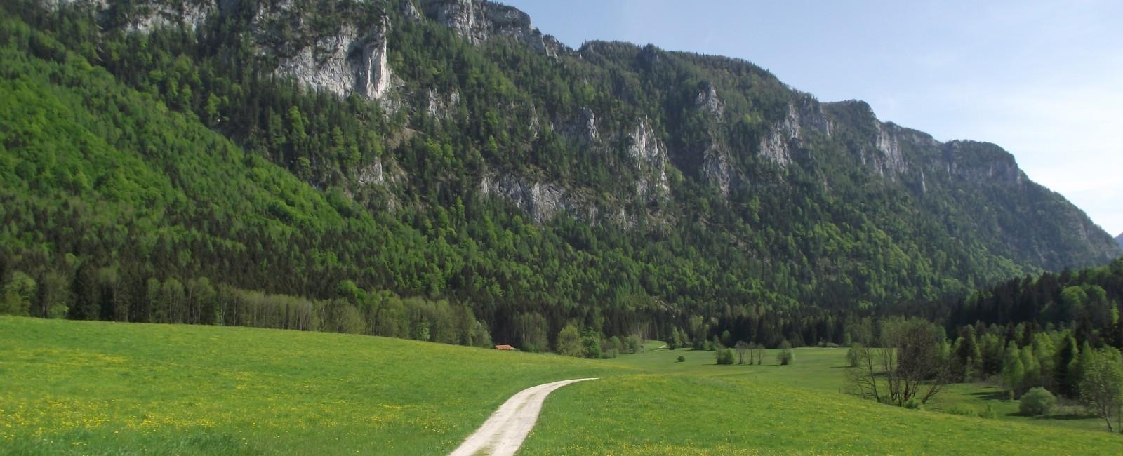 Inzell - Ferienwohnung Gräbeldinger am Rämerwegwald