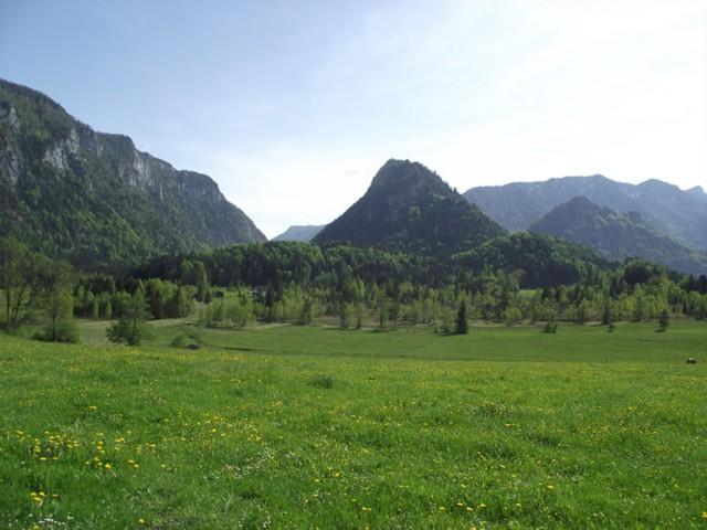 Falkenstein - Ferienwohnung Inzell am Römerweg 'Wald