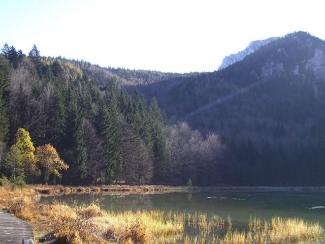 Frillensee Ferienwohnung Inzell am Römerweg 'Wald